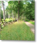 Battle Trail Metal Print