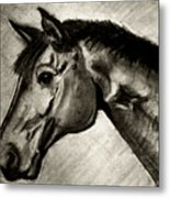 My Friend The Bay Horse Metal Print