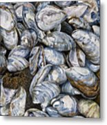 Bay Of Fundy Blues Metal Print