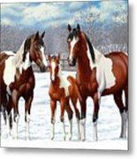 Bay Paint Horses In Winter Metal Print