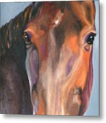 Thoroughbred Royalty Metal Print