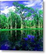 Bayou Reflections Metal Print