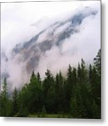 Bc Beauty Metal Print