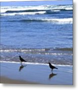 Beach Buddies Metal Print