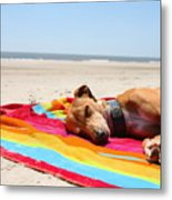 Beach Dreams Are Made Of These Metal Print