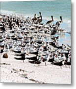 Beach Flock Metal Print
