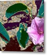 Beach Flower Metal Print