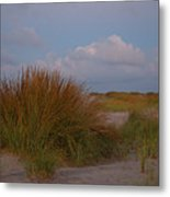 Beach Grass I I Metal Print