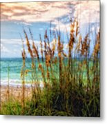 Beach Grass II Metal Print