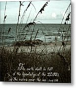 Beach Grass Oats Isaiah 11 Metal Print