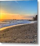 Beach Of Velella Metal Print
