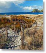 Beach Path 2 Metal Print