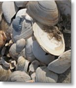 Beach Still Life IIi Metal Print