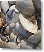 Beach Still Life IIi Metal Print