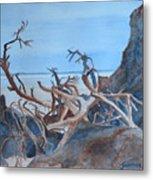Beach Tangle Metal Print