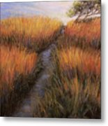 Beach Trail Metal Print