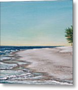 Bean Point  Metal Print