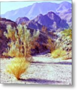 Bear Creek Trail Metal Print