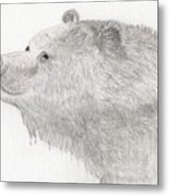Bear In Water Metal Print