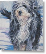 Bearded Collie In Snow Metal Print