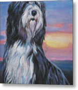 Bearded Collie Sunset Metal Print