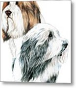 Bearded Collies Metal Print