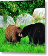 Bears In Love Metal Print