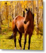 Beautiful Autumn Horse Metal Print