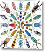 Beautiful Beetles Metal Print