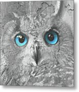 Beautiful Blue-eyed Owl Metal Print