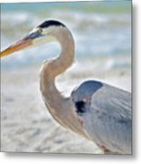 Beautiful Blue On The Beach Metal Print