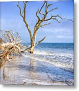 Beautiful Botany Bay Beach  Metal Print