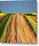 Beautiful Colors Along A Saskatchewan Country Road Metal Print