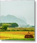 Beautiful Countryside Scenery In Autumn Metal Print