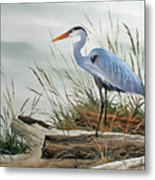 Beautiful Heron Shore Metal Print