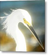 Beautiful In White Metal Print