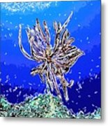 Beautiful Marine Plants 1 Metal Print by Lanjee Chee