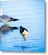 Beautiful Moments In Time Metal Print