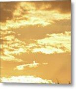 Beautiful Morming Sky  Metal Print