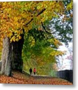 Beautiful Morning Walk In Autumn Metal Print