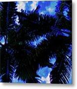Beautiful Palm In Blue Sky Metal Print