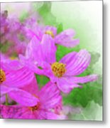 Beautiful Pink Flower Blooming For Background. Metal Print