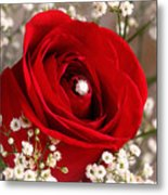Beautiful Red Rose With Diamond Metal Print by Tracie Kaska