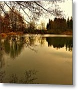 Beautiful Reflection In The Evening Hours Metal Print