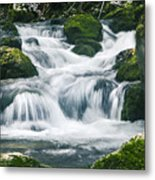 Beautiful River In Forest Metal Print