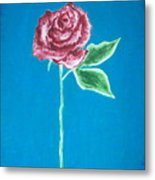 Beautiful Rose On  Blue Background Metal Print
