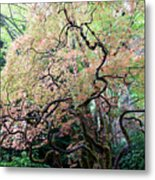 Beautiful Japanese Garden,butchart Gardens,victoria,canada 3. Metal Print