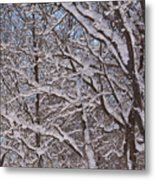 Beautiful Snow Metal Print