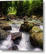 Beautiful Stream In Western Ghats Region Of Karnataka India Metal Print