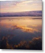 Beautiful Sunset Along Oregon Coast Metal Print
